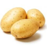 Картофель Брест недорого